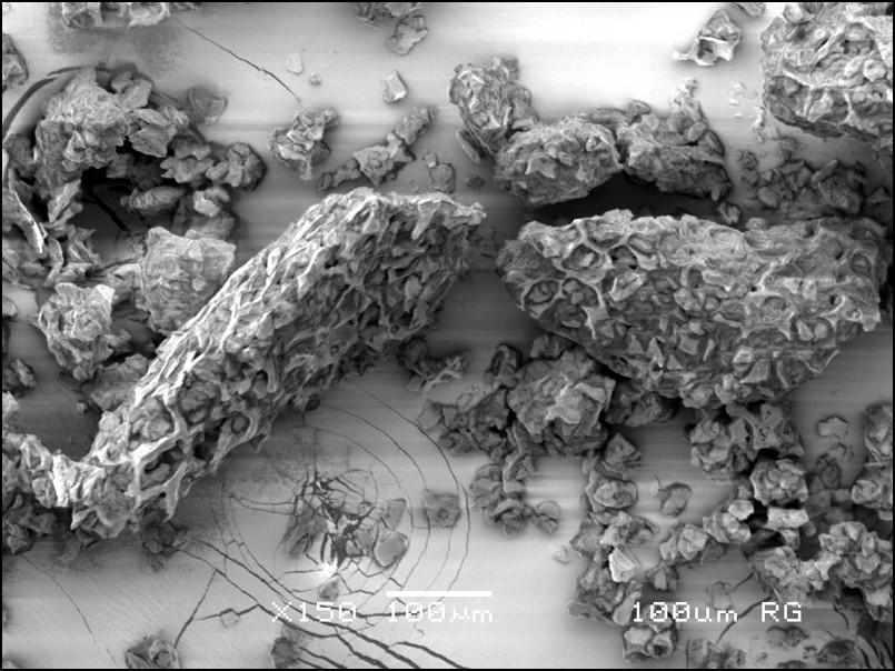 electron microscope image of ground coffee